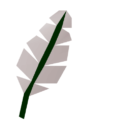 cropped-Feather3_detail.png